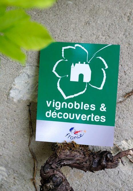 visite oenotourisme label Vignobles decouvertes